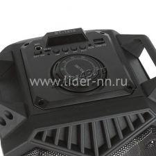 """Комбо-бокс колонка JBK BT1819/JBK-6502/6501 2х6"""" 30-40Вт USB /SD /FM /подсветка /пров.микроф /пульт Цена"""