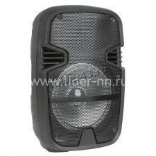 """Комбо-бокс колонка Eltronic EL8-01ch/02ch /03ch  8"""" USB /SD /FM /дисплей /MIC /LED Купить"""