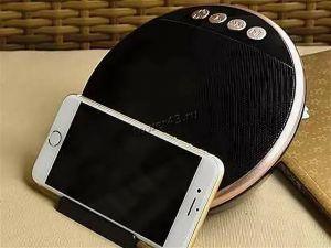 Мобильная колонка-плеер TG036 Bluetooth /USB /MicroSD /FM /AUX Цены