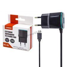 Сетевое зарядное устройство 220В -> microUSB ГОРИЗОНТ SC-02 black 1A USB Retail Купить