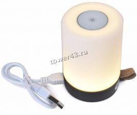 Сенсорный светильник-ночник с функцией PoweBank Wster WS-D06 2000mah Купить