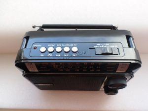 Радиоприемник RITMIX RPR-171 СВ, КВ, УКВ, питание от сети, USB, microSD, AUX черный Цены