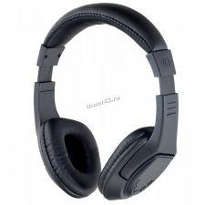 Наушники+микрофон полноразмерные Perfeo RIDERS, MP3, FM, microSD Купить
