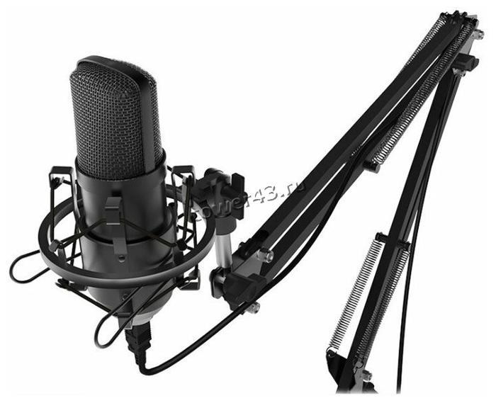 Микрофон Ritmix RDM-169 студийный, штатив, стойка-пантограф, поп-фильтр, ветрозащита, юсб