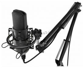 Микрофон Ritmix RDM-169 студийный, штатив, стойка-пантограф, поп-фильтр, ветрозащита, юсб Купить
