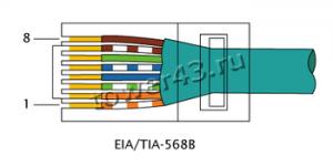 Кабель RJ-45 кат.5 UTP витая пара (жесткий) Купить